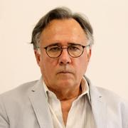 Luiz Felipe de Alencastro - Perfil