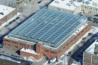 Montreal rooftop greenhouse -1