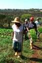 Agroecologia-boletim