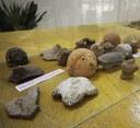 Arqueologia amazônica