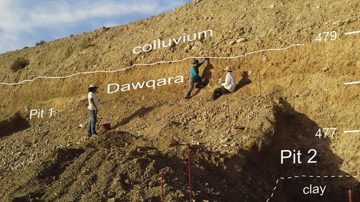 Dawqara - Jorusp