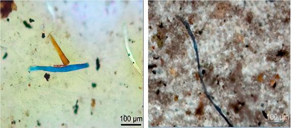 Fragmentos de partículas de polímero