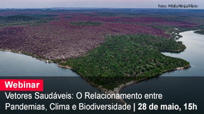 Home 1 - Pandemia e biodiversidade