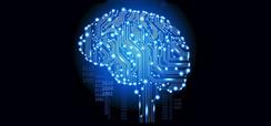 Home 2 - Cerebro digital