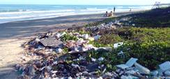 Home 2 - Cidades, praias e poluição marinha