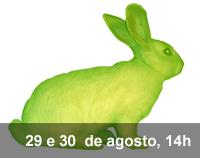 Home 3 - A Coelha e eu
