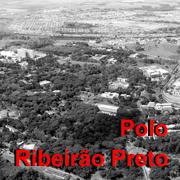 Home Polo Ribeirão Preto