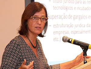 Maria Paula Dallari Bucci - Seminário Lei da Inovação