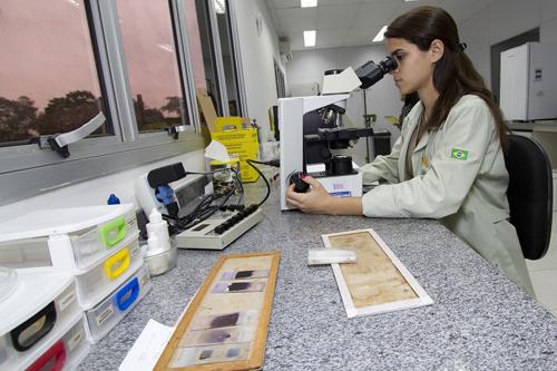 Mulheres na Ciência - 1