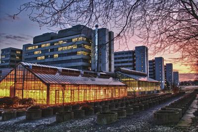 Universidade de Bielefeld