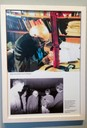 Foto de Norbert Elias na biblioteca do ZiF