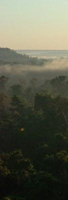 Amazonas. Foto: Cecilia Bastos/Jornal da USP